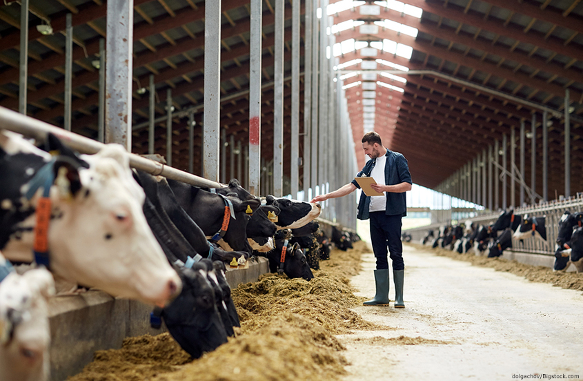 Livestock and Farm Security